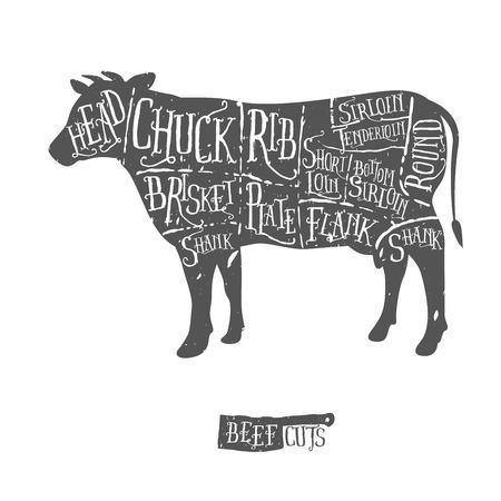 grill meat: Vintage coupures de boucher dessin�s � la main de sch�ma de boeuf Illustration