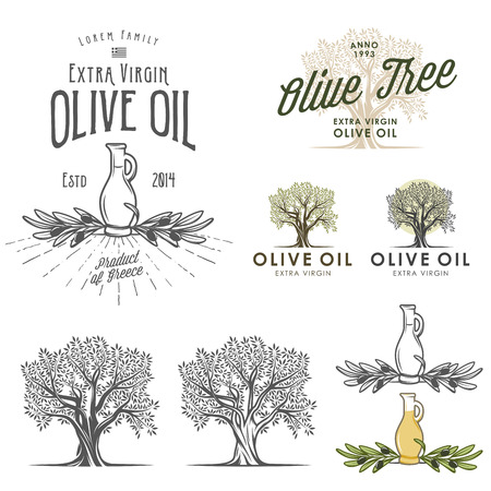foglie ulivo: Olive etichette di olio ed elementi di design