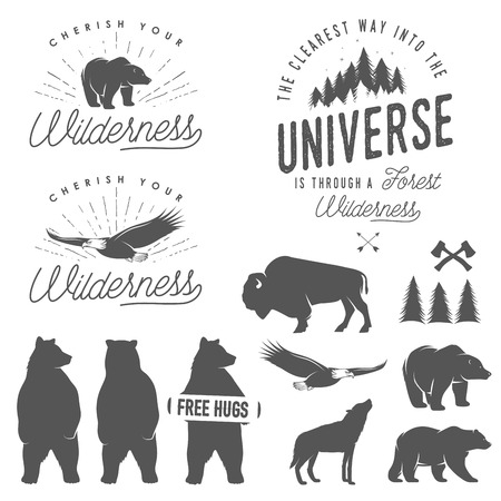 bear silhouette: Set of wilderness quotes, emblems, silhouettes and design elements