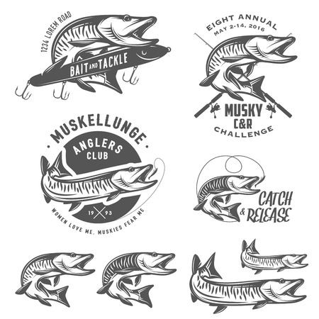 trout fishing: Set of muskellunge musky fishing design elements