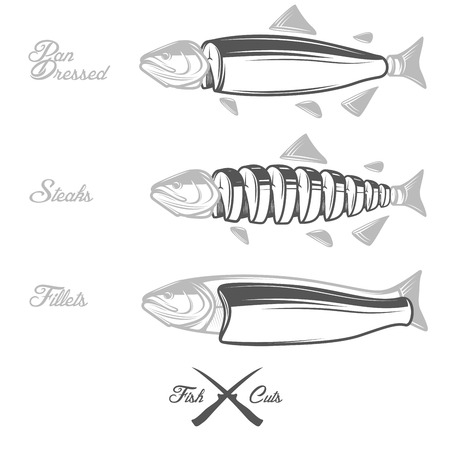 dressed: Salmon cuts diagram - whole fish, pan dressed, fillets and steaks