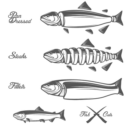 Lachs schneidet Diagramm - ganze Fische, Pfanne gekleidet, Filets und Steaks Vektorgrafik