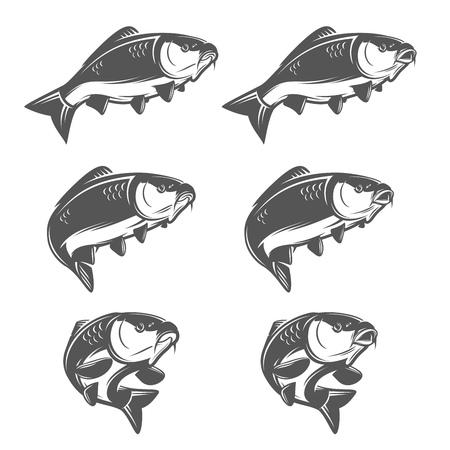 pez carpa: Conjunto de pescados de la carpa de la vendimia en varias posiciones. Abierto y la boca cerrada. Un solo color, ilustración espacio negativo