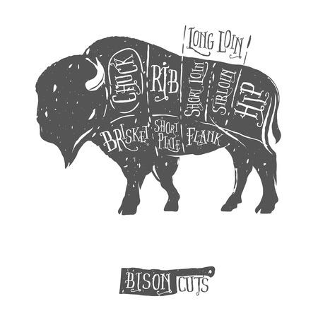 Vintage butcher cuts of bison buffalo scheme diagram Vectores