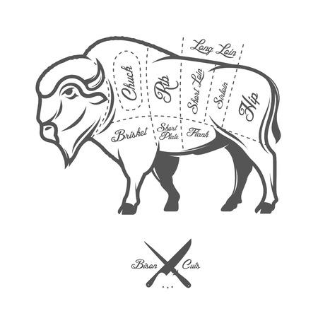 farm animal: Vintage butcher cuts of bison buffalo scheme diagram Illustration