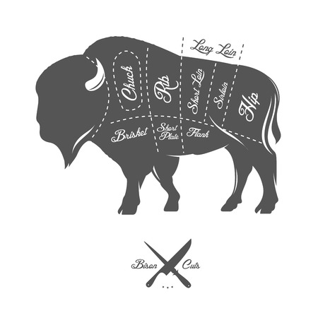 Vintage butcher cuts of bison buffalo scheme diagram Çizim