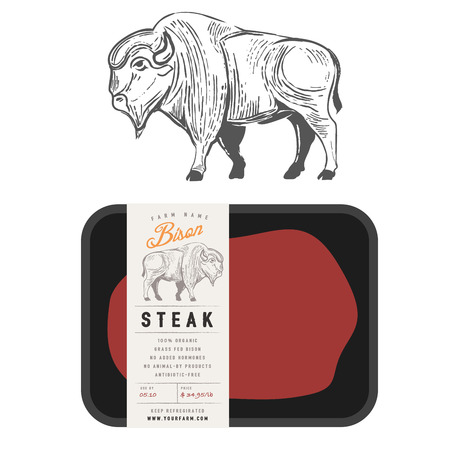 Vintage bison buffalo engraving style with sample package design