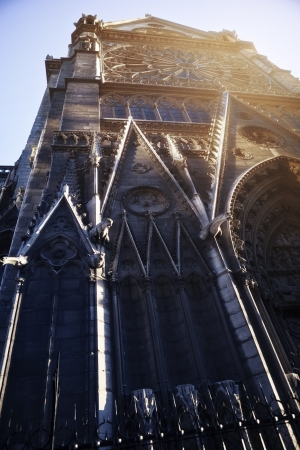 Detail of the north side of Notre Dame cathedral in Paris, France