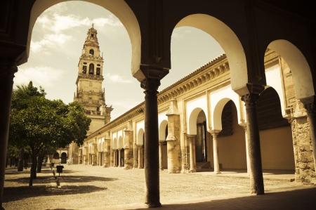 Giardino arancione alberi in Mezquita di Cordoba, Spagna Archivio Fotografico