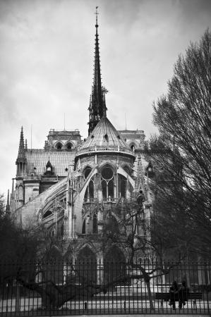Cattedrale di Notre Dame a Parigi, Francia