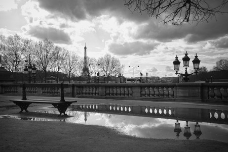 Eiffel Tower: Eiffel Tower reflecting in a puddle in the Tuileries Park in Paris, France