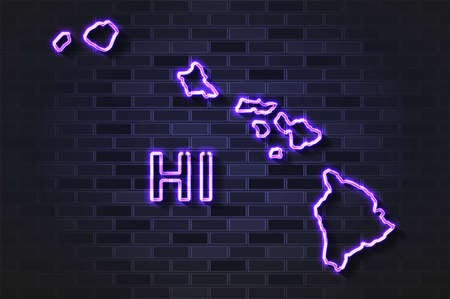Hawaii map glowing neon lamp or glass tube. Realistic vector illustration. Black brick wall, soft shadow.  イラスト・ベクター素材