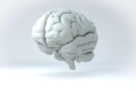 Geïsoleerde 3D Human Brain Illustratie. Wetenschap Anatomie Achtergrond. Stockfoto
