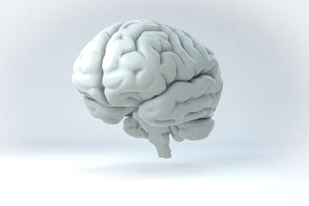 brain: Isolated 3D Human Brain Illustration. Science Anatomy Background. Stock Photo