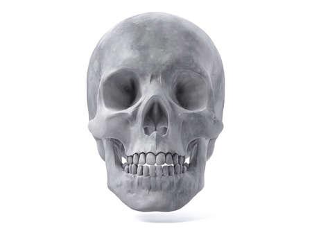 archeology: 3D Isolated Human Skull.