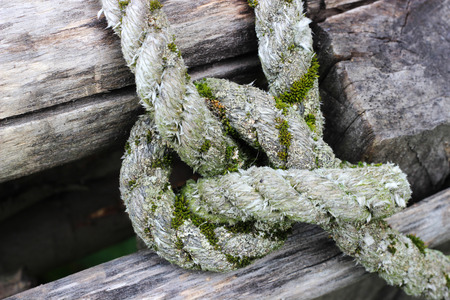 Old rope and knot