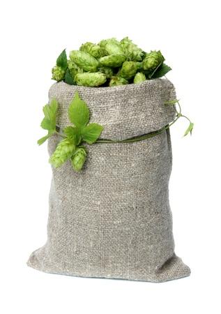 Hop voor bier in een zak op een witte achtergrond. Stockfoto