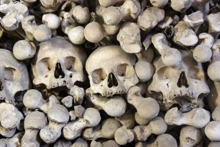Background  Heap of human bones close up  photo