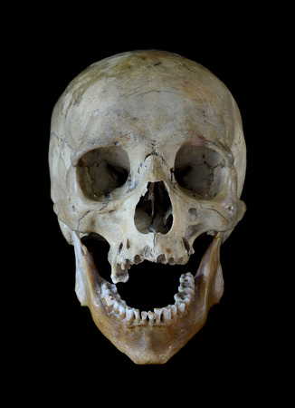 Human skull isolated on a black background. Stock Photo
