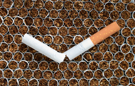smoke stack: Close up one cigarette against tobacco. Stock Photo