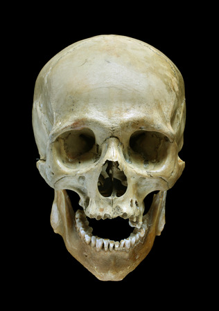 Skull of the person isolated on a black background.