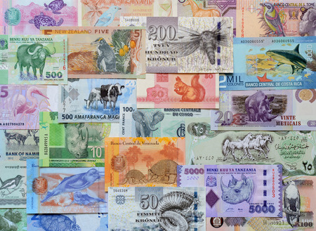 international money: Animals on paper money of the different countries.
