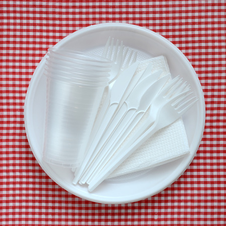 Disposable plastic plate on a checkered cloth.