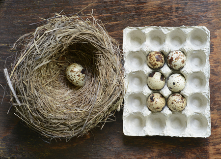 Quail eggs in a straw nest on wooden background. Stock Photo