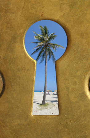 Keyhole and palm tree. Stock Photo