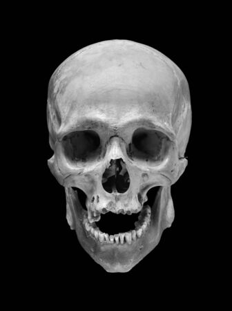 Skull of the person on a black