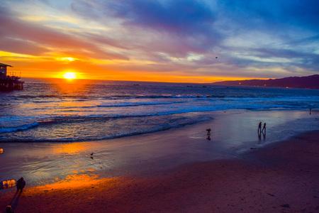 monica: Beach Santa Monica pier at sunset, Los Angeles, Seagull on the beach background