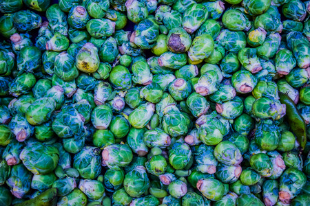 brussel: background or texture of fresh green Brussel Sprouts. brussel cabbage Stock Photo