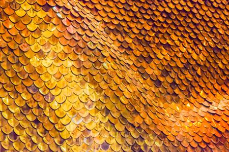 escamas de peces: Roach peces de oro Escalas de fondo, la textura de cáscara Foto de archivo