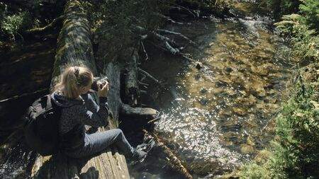Traveler photographing scenic view in forest river. Wood bridge fallen tree. One caucasian woman shooting nice magic look. Girl take photo video on camera. Photographer travel with backpack. Outdoor.