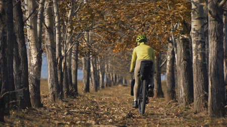 The woman travel on mixed terrain cycle touring with bikepacking. The traveler journey with bicycle bags. Sportswear in green black colors. The trip in magical autumn forest, arch, alley, avenue. Stockfoto