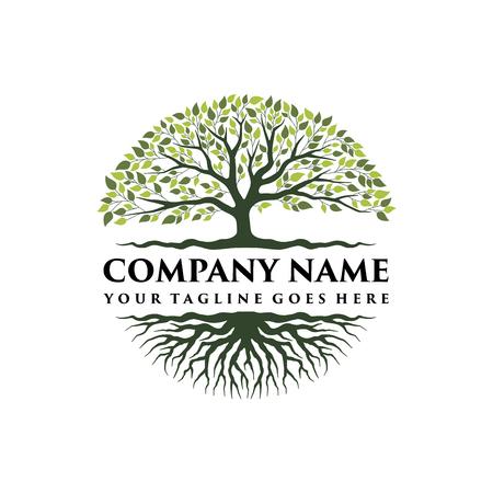 Diseño de logotipo de árbol vibrante abstracto, vector de raíz - inspiración de diseño de logotipo de árbol de la vida aislada sobre fondo blanco