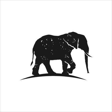 Rustic elephant logo design inspiration isolated on white background, Hipster logo design element