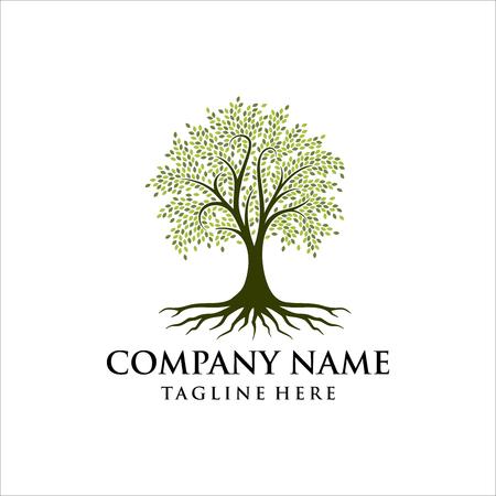Disegno astratto del logo dell'albero vibrante, vettore della radice - ispirazione del design del logo dell'albero della vita isolato su sfondo bianco Logo