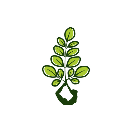 Moringa logo design, healty logo, beauty logo design inspiration, natural yoga logo design inspiration