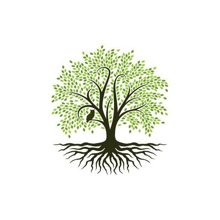 Abstracte levendige boom logo ontwerp, wortel vector - Tree of life logo ontwerp inspiratie Logo