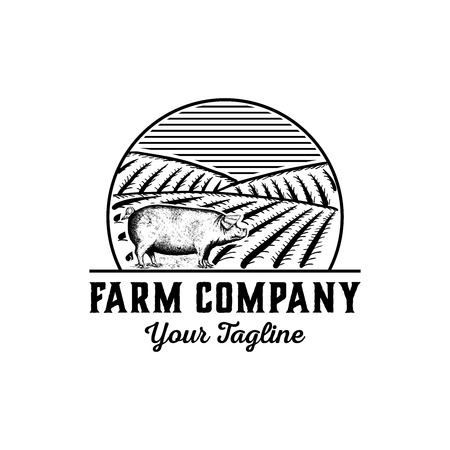 Hand drawn farm logo design vector - vintage pig logo design inspiration - bacon logo design isolated on white background