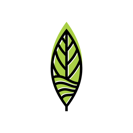 Leaf logo design inspiration, Tea leaf vector isolated on white background 矢量图像