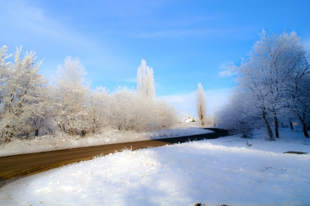 wintery day: Road, hoarfrost on trees, on a grass and on the earth in solar weather  Stock Photo
