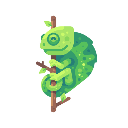 Green chameleon sitting on a tree branch. Exotic animal flat illustration