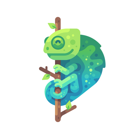 Green and blue chameleon sitting on a tree branch. Exotic animal flat illustration Ilustrace