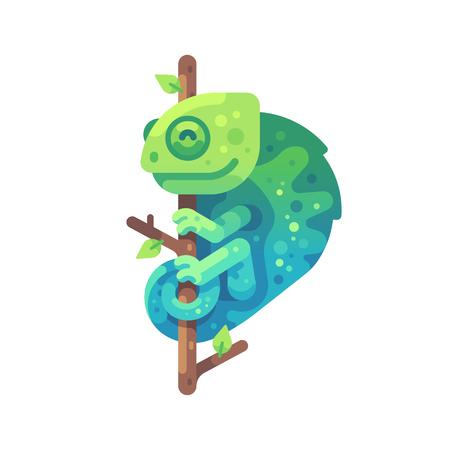Green and blue chameleon sitting on a tree branch. Exotic animal flat illustration Ilustração