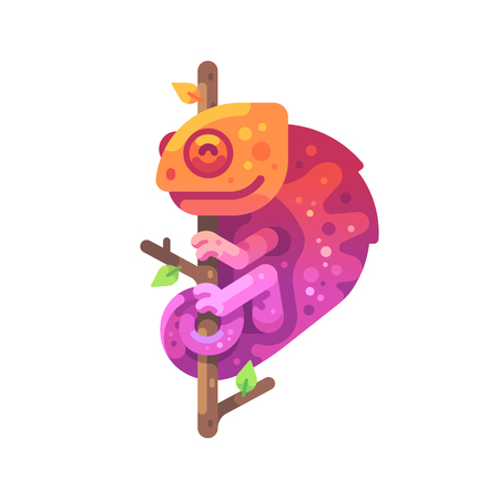 Orange and pink chameleon sitting on a tree branch. Exotic animal flat illustration