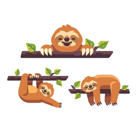 Set of three cute sloths on tree branches flat illustration