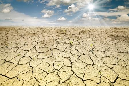 sequias: Terreno con Desert tierra seca y agrietada