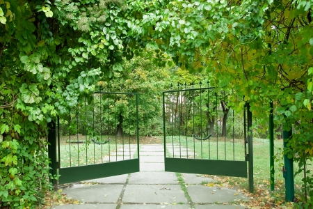 Iron gate in a beautiful green garden photo